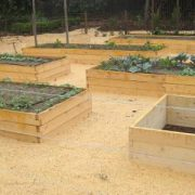 Rectangle-Raised-Bed-Garden-4.jpg