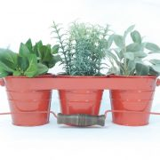 red-herb-garden-kit