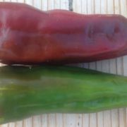 Red-Marconi-Peppers.jpg