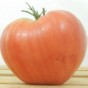 Red-Oxheart-Tomato-Seeds.jpg