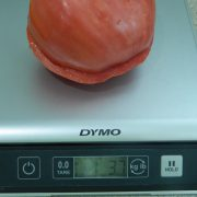 Red-Oxheart-Tomato-Weighed.jpg