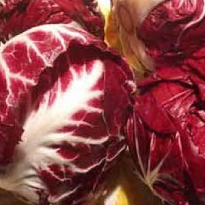 Red-Verona-Radicchio-Seeds.jpg