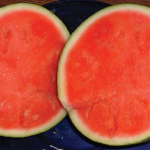 Seedless-Watermelon-Seeds.jpg