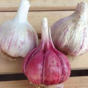 Spanish-Roja-Garlic-Skinned.jpg
