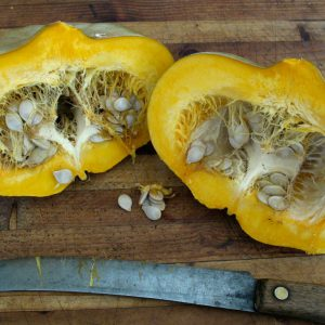 Sweet_Meat_Squash_Seeds.jpg