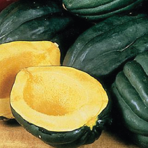 Table-Queen-Acorn-Squash-Seeds.jpg