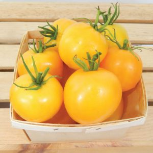Taxi-Tomato-Seeds.jpg