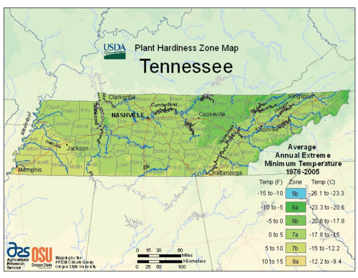 Tennessee Zone Hardiness Map