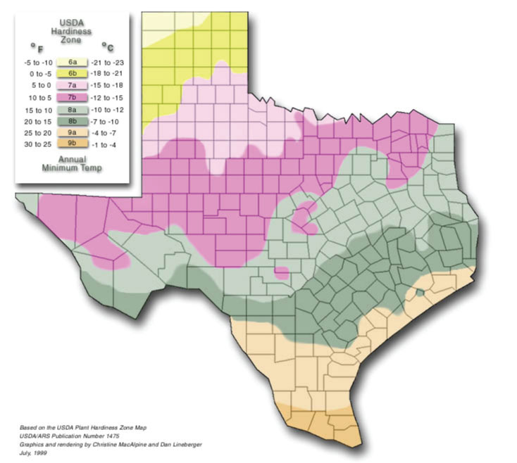 Texas Zone Hardiness Map