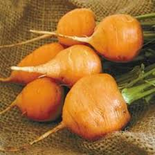 Thumbelina Carrot Seeds