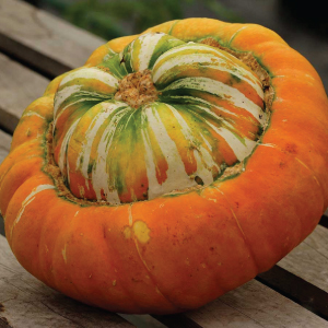 Turks-Turban-Squash-Seeds.jpg