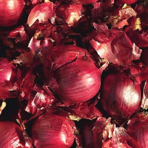 whethersfield-onion-sets