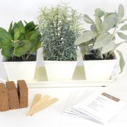 White-Cream-Metal-Complete-Herb-Kit.jpg