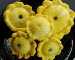 Yellow_Bush_Squash_Seeds.jpg