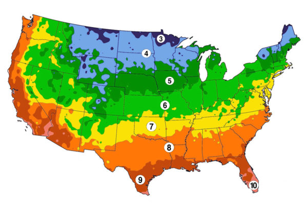 Growing Zones Urban Farmer Seeds - Us-plant-hardiness-zone-map
